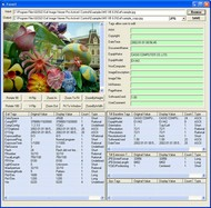 GOGO Exif Image Viewer Pro ActiveX OCX (Twice Developer) screenshot